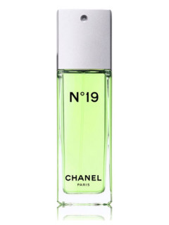 Chanel No.19 Women Eau de Toilette - tester 100 ml